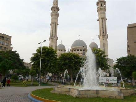 Ismailiya - Ismailiya
