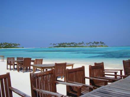 Dream Island - Dream Island