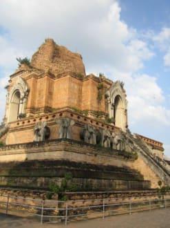 Der Tempel - Wat Chedi Luang
