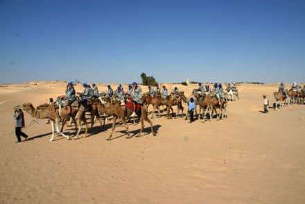 Ausflug in die Sahara - Sahara