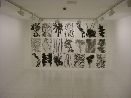 Kunst - Fundacion Cesar Manrique