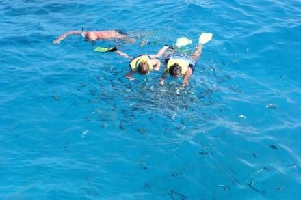 Schnorcheltour - Schnorcheln Hurghada