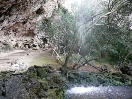 Fluss/See/Wasserfall - La Reserva Parc Natural