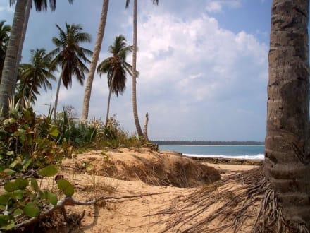 Strand der Playa Esmeralda - Playa Esmeralda - Punta del Rey