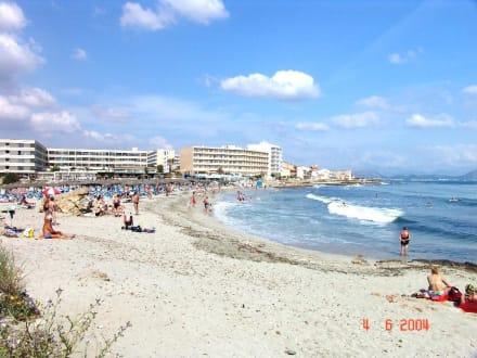 Strand von Son Baulo (Ortsteil von Can Picafort) ca. 300 m - Strand Son Bauló