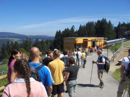 Warteschlange am Start - Alpsee Bergwelt