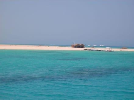 Giftun Inseln - Giftun / Mahmya Inseln