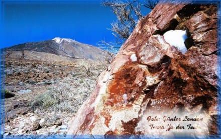 Teneriffa - der Teide - Teide Nationalpark
