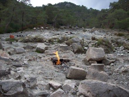 Brennende steine