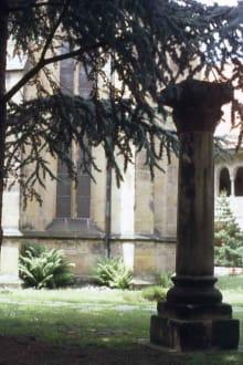 Der Domhof - Dom