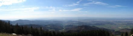 Blick auf die Rheinebene - Hochblauen