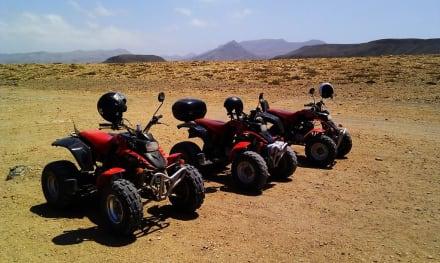 Quads - Quad Tour Motor Adventure Tours Tarajalejo