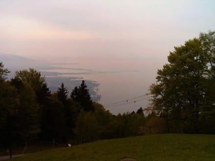 Bodensee vor Gewitter - Pfänder
