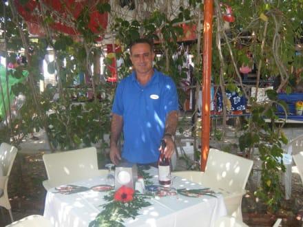 Ömer die gute Seele am Strand - Hotel Narcia Resort Side