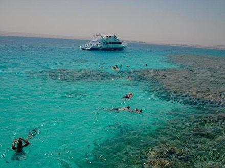 Schnorchelausflug mit Tiger Marine - Schnorcheln Hurghada