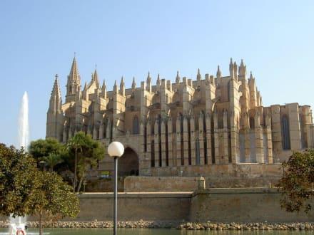 Kirche - Kathedrale La Seu
