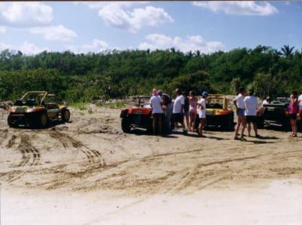 Buggy-Fun 2004 - Extra Tours