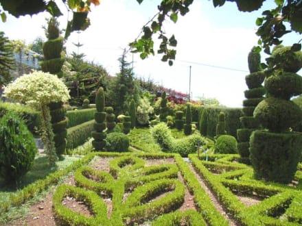 Jardim Botânico - Botanischer Garten Funchal