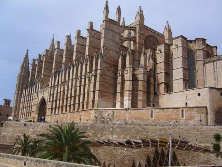 In Palma ca. 60 min mit dem Auto entfernt - Kathedrale La Seu
