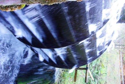 Wasserrad mit Auslauf - Wasserkraftwerk