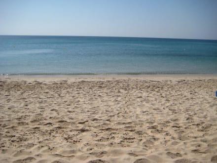 Plage - Radisson Blu Resort & Thalasso Hammamet