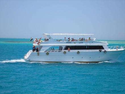 Tauchboot - Giftun / Mahmya Inseln