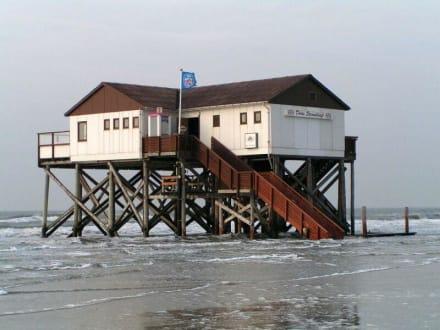 Cafe am Strand bei Flut - Strandbar 54° Nord