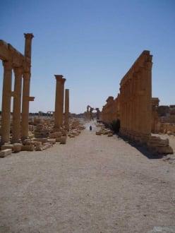 DIe alte Karawanenstraße - Ruine Palmyra