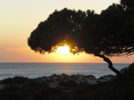 Sonnenuntergang vom Pool aus - Hotel Valentin Sancti Petri