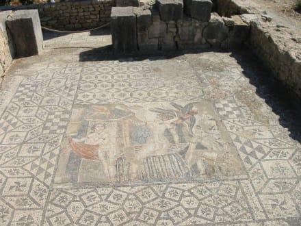 Römische Ausgrabungen in Volubulis - Römerstadt Volubilis