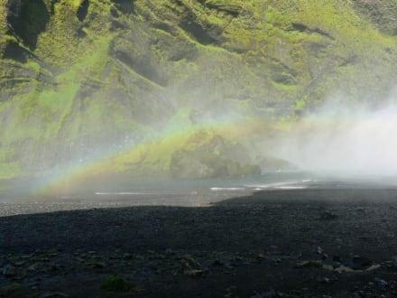 Regenbogen am Seljalandsfoss - Seljalandsfoss