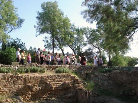 Beginn des Rundganges - Ausgrabungen Karthago