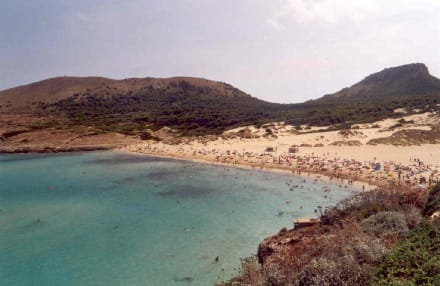 Strand von Cala Mequida - Strand Cala Mesquida