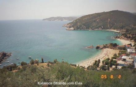 Kalamos Strand im Evia - Strand Kalamos