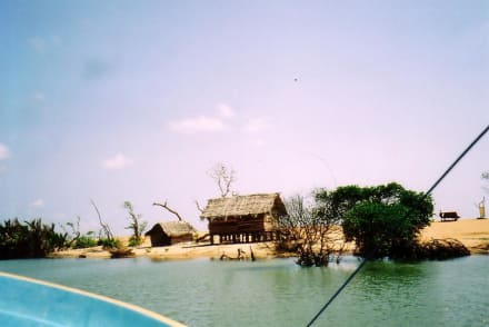 Bootsfahrt mit Vincent - Bootstour Negombo