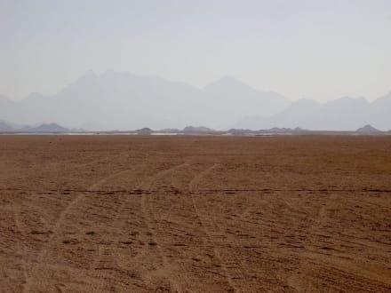 Wüste - Peak Safari El Gouna