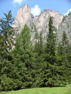 durch das Lagental zur Puez-Hütte - Puez-Hütte