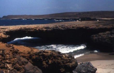 Die Naturbrücke - Inselrundfahrt