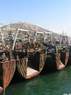 Im Hafen von Agadir - Fischereihafen Agadir