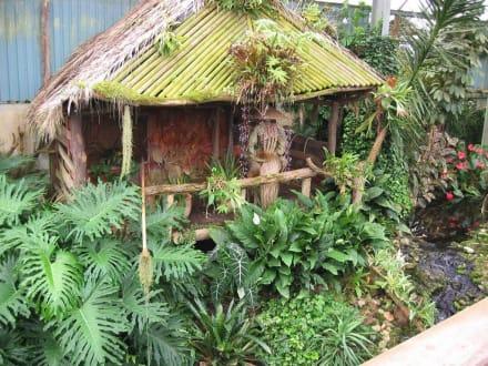 Hütte - Orchideenhof in Luttelgeest