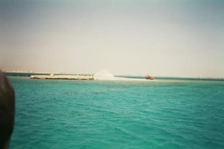 Riff - Schnorcheln Hurghada