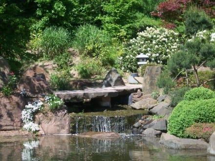 Bilder Mini Wasserfall   - Reisetipps