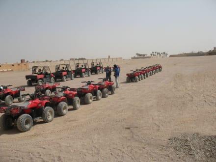 Sonstiges Transportmittel - Falco Safari