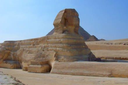 Shinx - Sphinx von Gizeh
