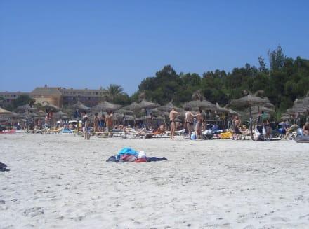 Traumstrand - Strand Alcudia