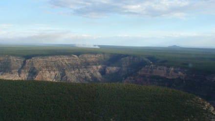 Ausblick aus dem Helikopter - Helikopter-Rundflug Papillon Grand Canyon Nationalpark