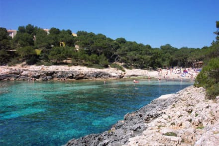 Strand Cala Barca - Cala sa Barca