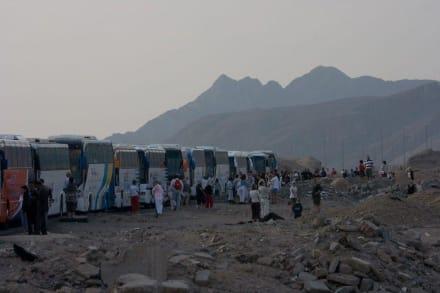 Von Safaga nach Luxor per Bus-Konvoi - Transport