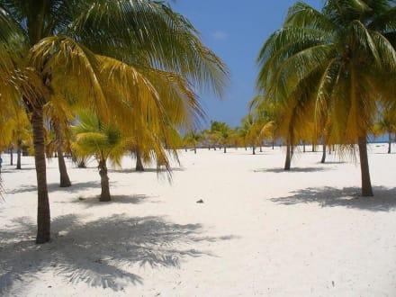 Strand/Küste/Hafen - Playa Sirena