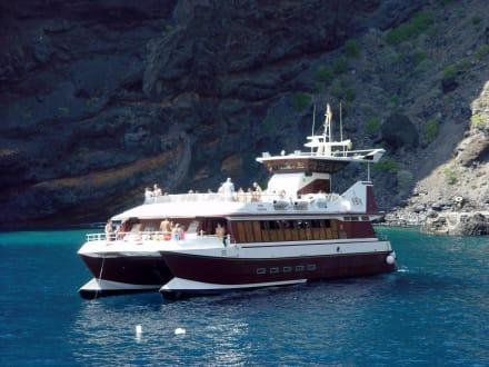 Ausflugsboot - Teneriffa (Delfinfahrten) - Delfin Tour Playa de las Americas
